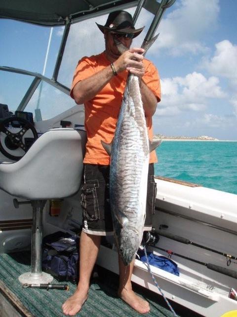 Spanish Mackeral off Coral Bay