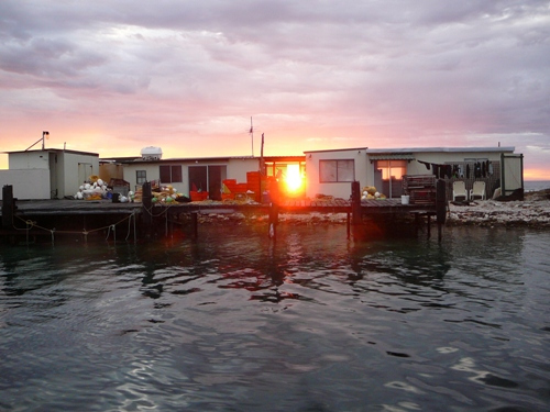 EARLY MORNING , ABROLHOS