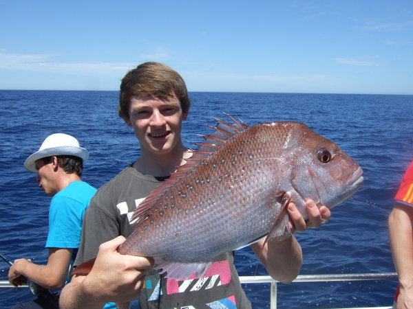 Pink Snapper caught aboard Saltwater Charters WA