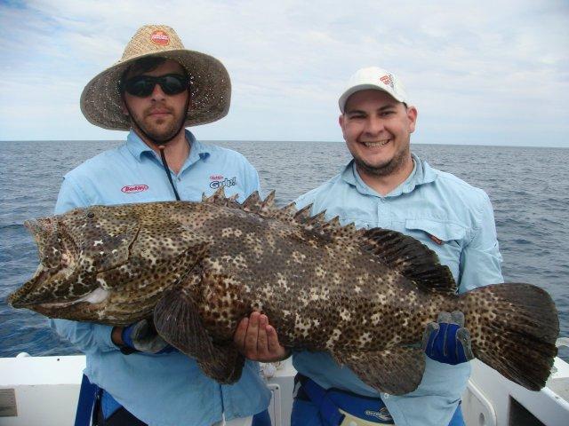 Cod fishing fishing wa fishing for Rock cod fish