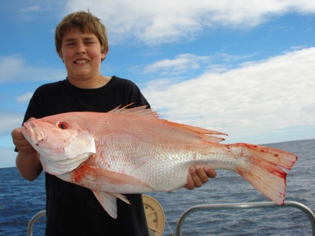 Sea perch but what type fishing for Sea perch fish