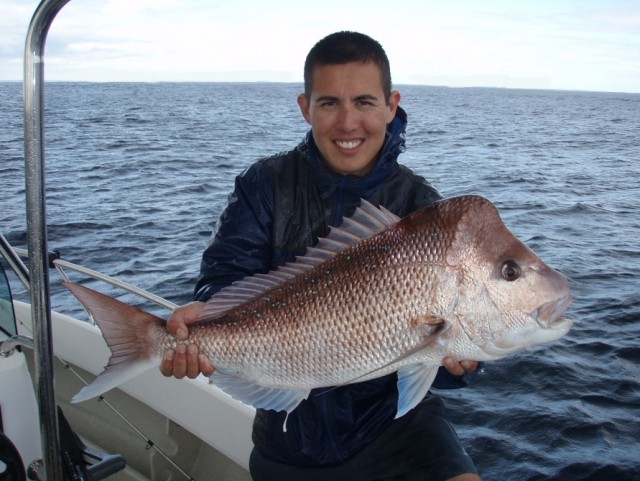 Old man Snapper 1 caught on 6lb gear (released)