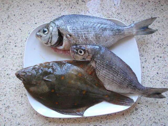 plaice and bream
