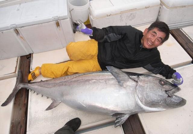 90kg Dogtooth Tuna
