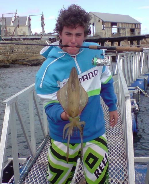 PB Metro Squid