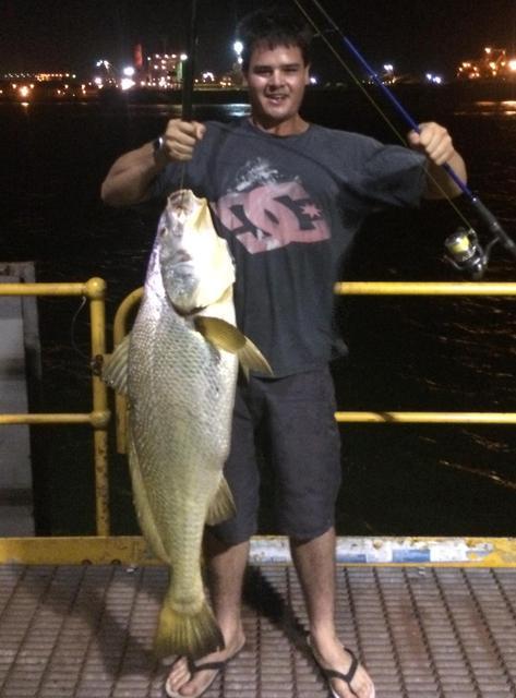 Black Jewfish @ Port Hedland Jetty.
