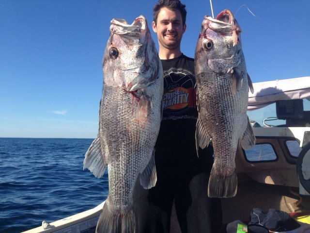 Double Header! Both hooked up 13.8 & 8.6kg mate Holdin Both Fish