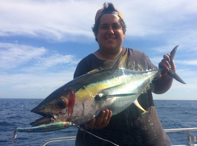 Yellowfin are around