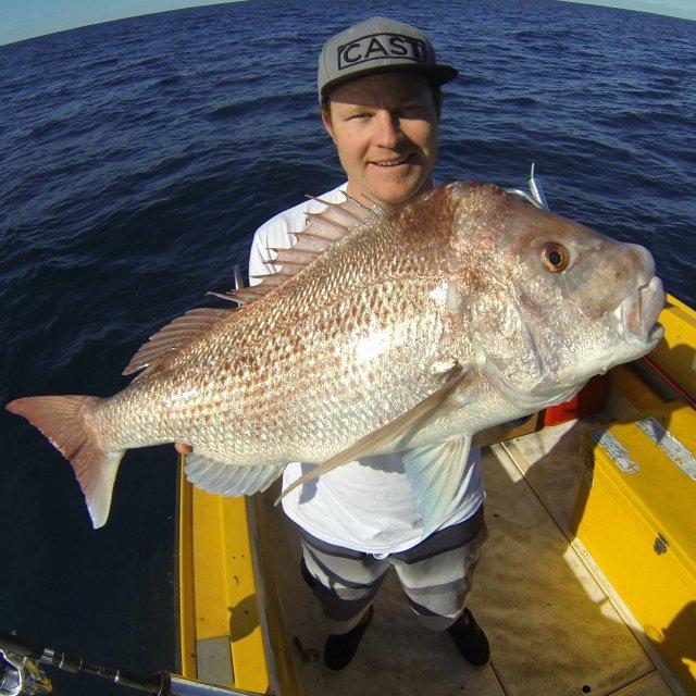 90cm pink snapper