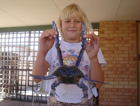 Jazz's crab
