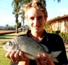 Lee's Bream