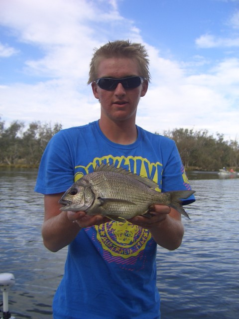 bream from the murray