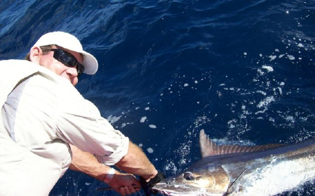 second marlin