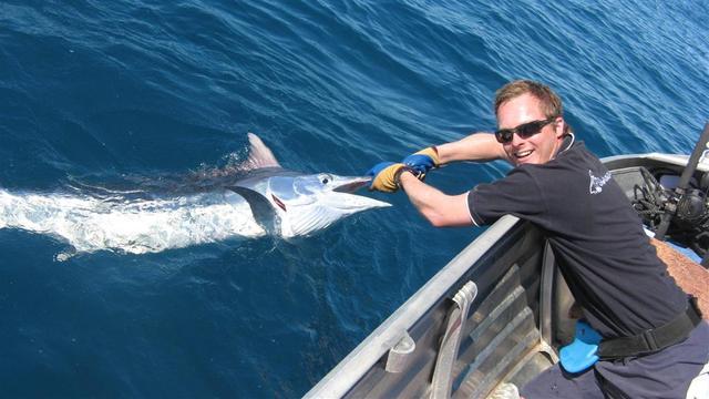 Poida's first marlin 2