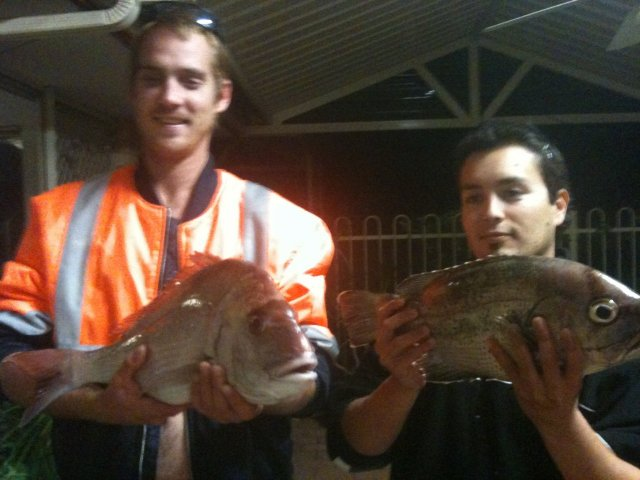 64cm snapper n 55cm dhuey a couple km out off rocko