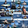 Montage of fish from this year
