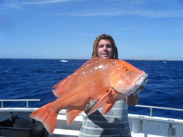 14 kg red 14 metres of water