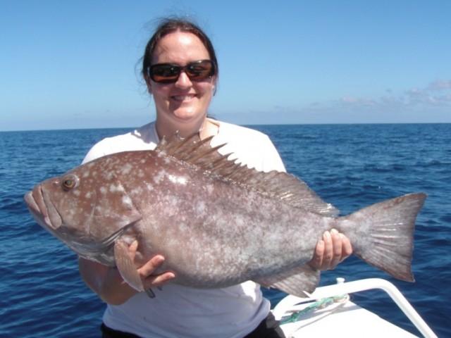 Coral Bay 8kg Rankin
