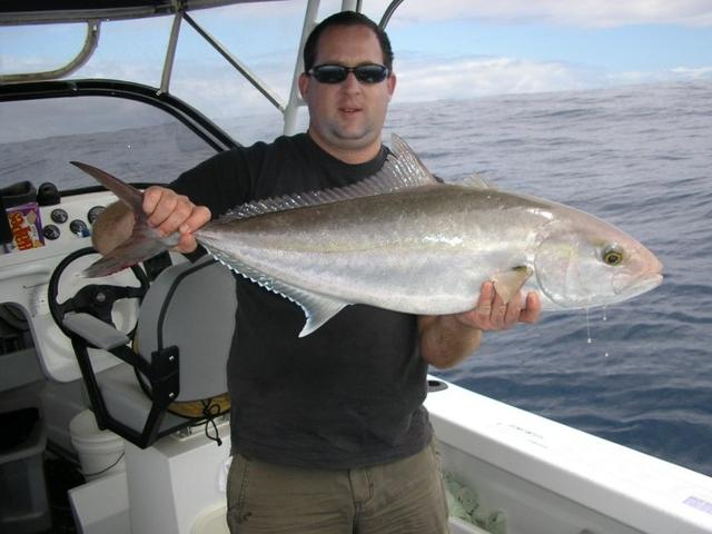 Containers Amberjack