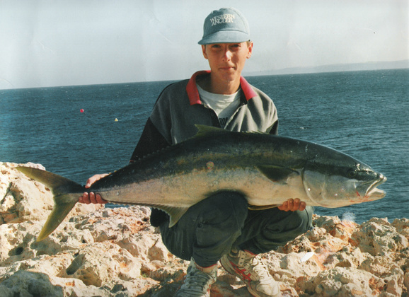 Yellowtail King