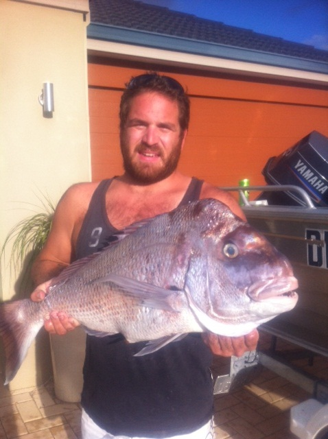 Snapper from the tinnie