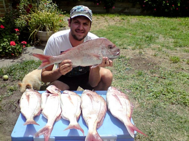 Snapper bag out (Port Phillip Bay, Vic)