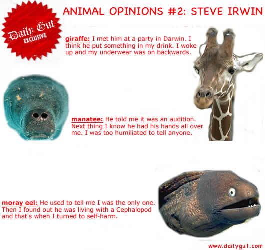 Steves Friends
