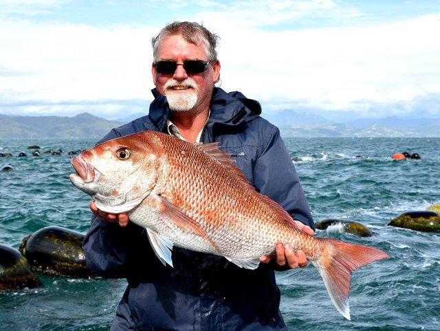 Coromandel New Zealand Trip