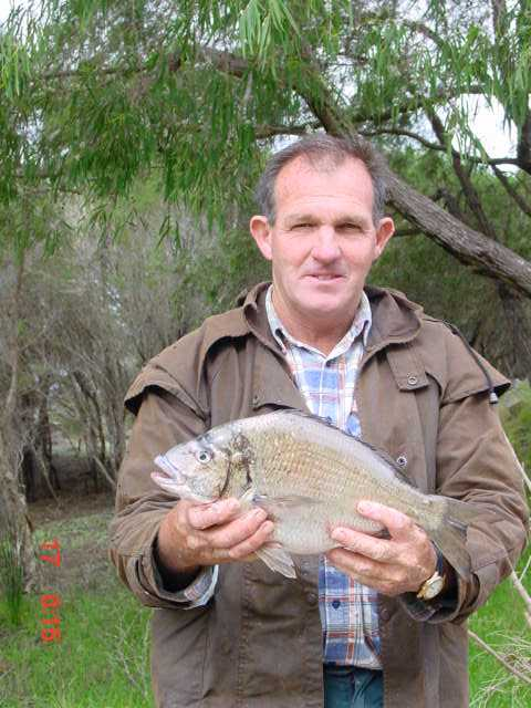 JT's Black Bream