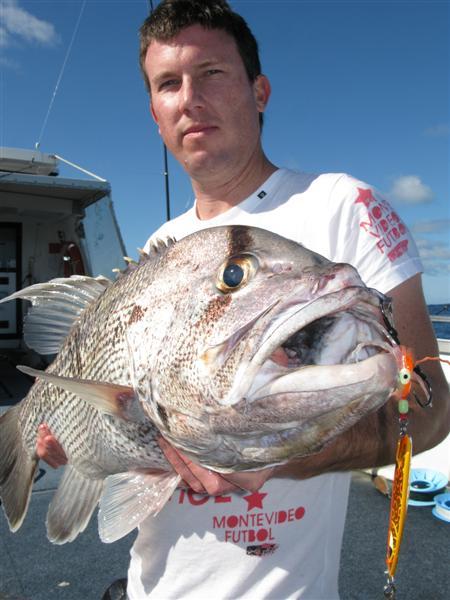 Whitey fish