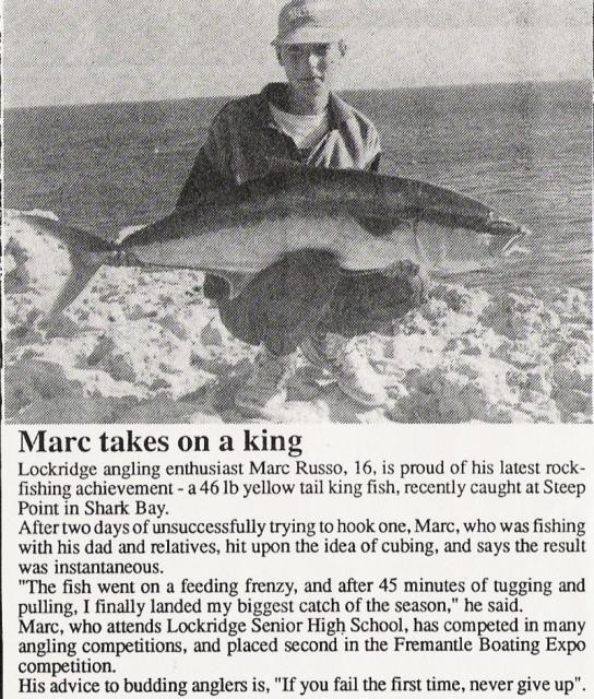 48 pound yellowtail King
