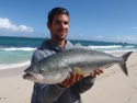 kurtfish's picture
